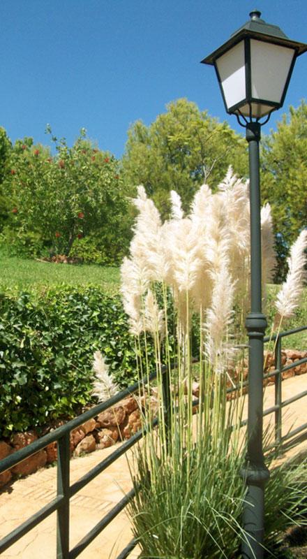 Servicios for Mantenimiento jardines